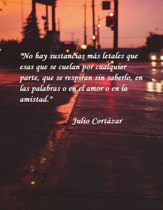 Frase de Julio Cortázar, Rayuela