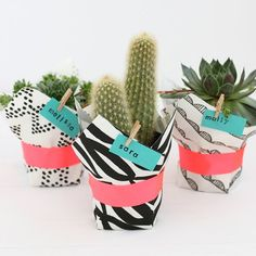 Dress up tiny potted succulents in a fun fabric wrap before passing them out to friends or party guests.