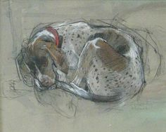A ' Dog Drawing ' in pastel by Felicity House.