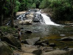 cachoeira do pitu - Canaéia - SP Pesquisa Google