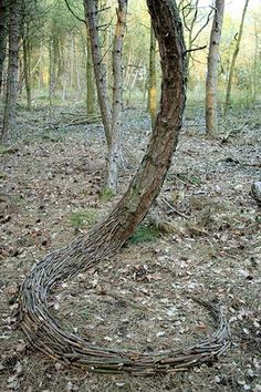 Official homepage of South African land artist Strijdom van der Merwe. Strijdom uses found materials on-site to create installations, as well as create sculptures in response to a landscape, urban space or theme. Wood Sculpture, Garden Sculpture, Metal Sculptures, Abstract Sculpture, Bronze Sculpture, Hr Giger Art, Ephemeral Art, Nature Artists, Forest Art