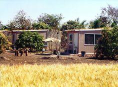 Gir Birding Lodge - Sasan Gir - Gujarat