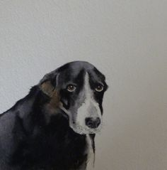 Dog 5 by kaymcdonagh on Etsy, $35.00