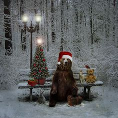 Christmas Snow and Bears and Bunnies and a Bird! Merry Christmas Everyone, Noel Christmas, Christmas Animals, Country Christmas, Winter Christmas, All Things Christmas, Christmas Crafts, Christmas Wishes, Merry Xmas
