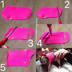 DIY Pet Stuff...  How to make a rat sweater from a sock!