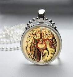 Round Glass Bezel Anatomical Brain Necklace Pendant