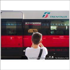 @gabri_cecca con #etr500 #frecciarossa #treno #ferrovia #railway #train #rimini #myrimini #raccontarimini  #romagna  #photographer @thestrawberryfield #mytown #instamood #instarimini #instaromagna #igers #igersfc #igersemiliaromagna #ig_forli_cesena #ig_emiliaromagna #vivoemiliaromagna #vivocesena #vivorimini #ig_rimini_ #fotografoitaliano #ig_emilia_romagna @fra.cecca