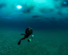 """Diving Scientists Report 'Big Changes' Beneath Antarctic Ice Shelf     Climate change may be leading to shifts in the communities of sea life beneath an Antarctic ice shelf researchers say.      Scientists diving beneath Antarctica's Ross Ice Shelf have discovered unexpected changes in the seafloor ecosystem compared to previous studies of the same area and they think the thinning of the ice shelf caused by climate change may be to blame.      """"Surprisingly big changes in the coastal…"""