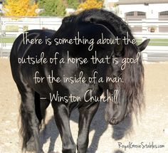 Winston Churchill understood the lessons and strength a horse can give you. Reconnect with your #SoulSelf. #HorsesHealHearts