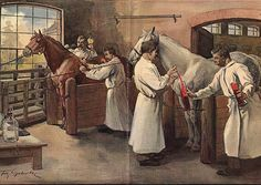 Recovering diphtheria serum from horse blood in Marburg, Germany. 1890s.