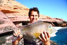 Catching fish in #kalbarri    www.kalbarri.org.au