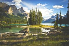 Canadian Culture: Backpacking Alberta's Skyline Trail. http://www.gmedical.com/locum-news/canadianculture/40092227