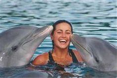 who wouldnt want to swim with dolphins