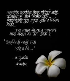 Marathi Poems, Different Quotes, Inspirational Message, Kale, Motivational, Positivity, Calligraphy, Messages, Beautiful