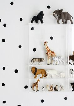 Animal figurines in bookshelf