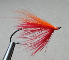 Fall Favourite Salmon And Steelhead Fly Fall Favorite