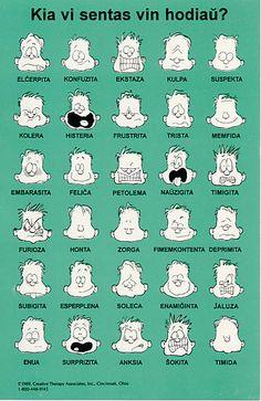 Esperanto Calvin