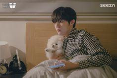 Boy Idols, Puppy Names, My Boo, Bellisima, Kpop, Puppies, Animals, Twitter, Singers