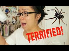 TERRIFIED OF SPIDERS! - May 08, 2015 -  ItsJudysLife Vlogs