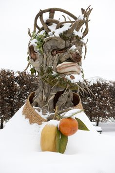 """Winter"" by Philip Haas, after Giuseppe Arcimboldo.  The sculptures of Four Seasons still overshadow the courtyard near the Nymphaea pools for a few more months. Some are fully enveloped in their element right now."