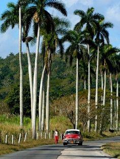El campo cubano. Mayarí Oriente