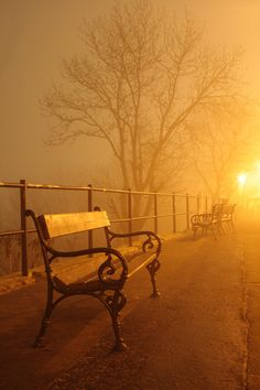 Photograph misty solitude - Budapest - Hungary - by Zoltan Tujner on 500px