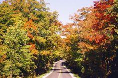 Sur le Chemin Gosford en automne. Ce chemin (route) ainsi que le Chemin Craing, reliaient autrefois Boston (États-Unis) à Québec, parcouru par des diligences.