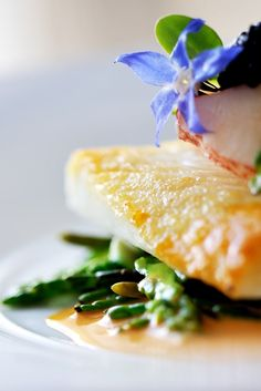 Learn how to cook brill – the delicious, delicate flatfish loved by chefs and foodies alike.