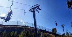 Nocky Flitzer & Nocky´s Almzeit Turracher Höhe | Kärntens Top 10 Ausflugsziele  Die Flitzer vom Nocky Flitzer werden per Lift wieder auf 2000 Meter Höhe befördert. Runter geht es wesentlich flotter. Zum Start kommt man zu Fuß per Wanderung oder mit der Panoramabahn, die mit der Kärnten Card gratis ist.   #urlaub #österreich #austria #nockyflitzer #turracherhöhe #turrach #kärnten #ausflugstipps #reiseziele #kärntenurlaub #nockberge #bergbahnen #wandern #herbst Utility Pole, Water Playground, Driving Route Planner, Ride Along, Roller Coaster, Road Trip Destinations
