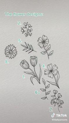 Flower Line Drawings, Flower Sketches, Art Drawings Sketches Simple, Pencil Art Drawings, Easy Drawings, Line Flower, Floral Drawing, Art Floral, Lilies Drawing