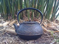 tea and bamboo Bamboo Leaves, Tea Accessories, Watering Can, Balanced Diet, Kettle, Natural Beauty, Herbalism, Pots, Exercise