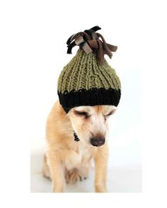 Custom Pet Beanie  solid or twotone  36 color by PawApparel, $12.00
