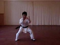 Korean Martial Arts Maengho Gwon (Fierce Tiger Fist)