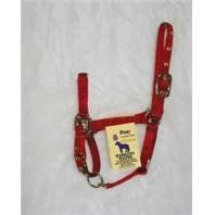 "Hamilton Halter Company 3das-P Nyl Chinhalt Pony Red by Hamilton Halter Company. $16.76. RED. PONY. ""For ponies.Adjustable chin with throat snap.3/4  nylon halter.Only the highest quality durable nylon webbing, thread and hardware is used to produce the hamilton product line.3/4  adj chin halter w/snap.SizePONYColor RED""BCI - 347566. Save 41% Off!"