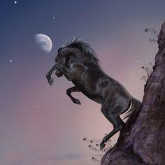"""""""на краю"""" #Sag #Centaur #Magic"""