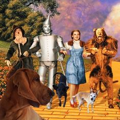 2018 The Wizard of Oz Wall Calendar (Mead): Spend the year with Dorothy, Scarecrow, the Tin Man, Lion and more in this 2018 calendar. Wizard Of Oz Soundtrack, Beloved Film, Yellow Brick Road, Judy Garland, Over The Rainbow, Vintage Hollywood, All About Time, How To Memorize Things, Calendar