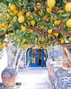 Photo by Have you ever visited this enchanting place? & The post Lemon spot Amalfi Coast, Italy. Photo b appeared first on . Cool Places To Visit, Places To Travel, Places To Go, Travel Destinations, Beautiful World, Beautiful Places, Wonderful Places, Amalfi Coast Italy, Destination Voyage