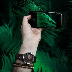 Prirodzeným prostredím pre stromy Zebrano sú tropické dažďové pralesy v strednej Afrike; stromy dorastajú až do výšky 40 metrov a ich kmene sú bežne dlhé 20 metrov bez uzlov. Jadro dreva je sivohnedé s matným leskom a je pokryté tmavohnedými pásmi, ktoré pripomínajú vzor zebry. Drevo stromov Zebrano je tvrdé a odolné voči poveternostným vplyvom, zachováva si však svoju pružnosť. Wood Watch, Modeling, Watches, Accessories, Fashion, Wooden Clock, Moda, Modeling Photography, Wristwatches