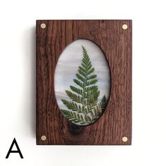 Pressed Fern in Wood Frame - Wide Eyed Designs