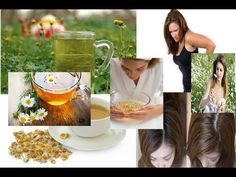 Top 5 Benefits of Chamomile - YouTube