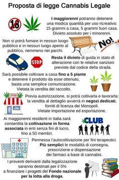 il popolo del blog,notizie,attualità,opinioni : la lorenzina non vuole la cannabis legale,preferis...