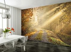 Autumn Forest Wallpaper Mural Muurposter