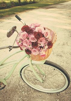 Life is like riding a bicycle... in order to keep your balance, you must keep moving ~Albert Einstein~~♥