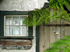 Gretel ~ Hugh Comstock Fairytale Cottage in Carmel~by~the~Sea built in 1925 Irish Cottage, Old Cottage, Cottage In The Woods, Cottage Style, Cottage Door, Garden Cottage, Cottage Ideas, Storybook Homes, Storybook Cottage