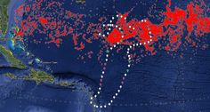 L'accumulation de déchets plastiques, baptisée « 7e continent », est surtout connue dans le Pacifique. Mais elle existe aussi en Atlantique. Patrick Deixonne entame aujourd'hui une nouvelle...