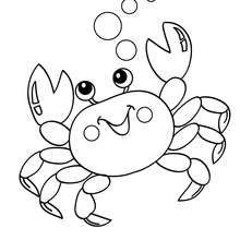 Crab Coloring Pages: Here are our top 10 crab coloring pages printable! Since crabs are so different to look at, […] Make your world more colorful with free printable coloring pages from italks. Our free coloring pages for adults and kids. Animal Coloring Pages, Coloring Book Pages, Printable Coloring Pages, Coloring Sheets, Ocean Coloring Pages, Mermaid Coloring Pages, Mandala Coloring, Sea Animals Drawings, Images Kawaii