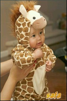 My future baby is totally gonna be a giraffe for his/her first Halloween! Cute Costumes, Baby Costumes, Halloween Costumes For Kids, Baby Animal Costumes, Baby Kostüm, Baby Kids, Little Babies, Cute Babies, Cute Baby Pictures