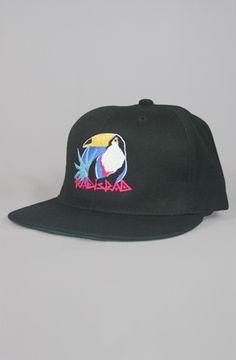 Toucan Snapback Hat in Black by Radisrad
