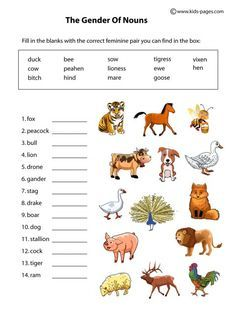10 Worksheet Ideas English Grammar Worksheets Nouns Worksheet Grammar Worksheets