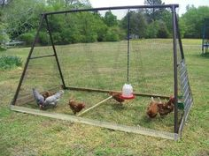 """""""Swing reused as chicken coop"""" - i love the creativity and resourcefulness of people!!  :)"""